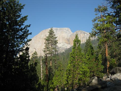 Half Dome from the trail