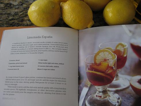 Limonada Espana recipe