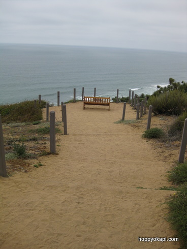 bench overlooking the beach