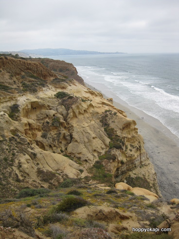 Cliffs and beach, looking south from Guy Fleming trail