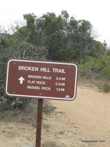 More trail info
