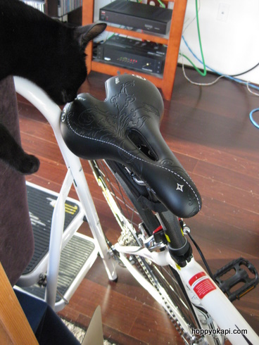 Specialized Lithia Saddle