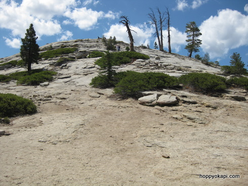 "The Sentinel Dome summit ""trail"""