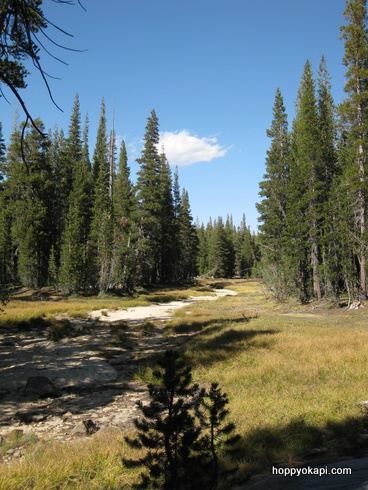Scenery near the trailhead