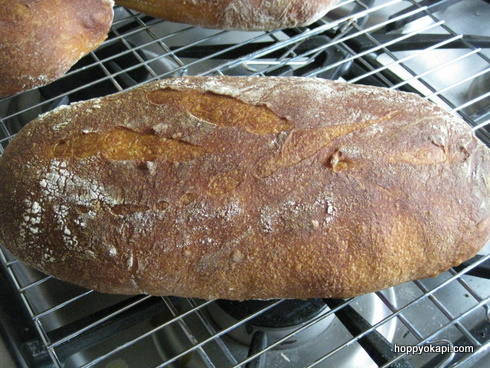 Sweet Potato Sourdough fresh from the oven!